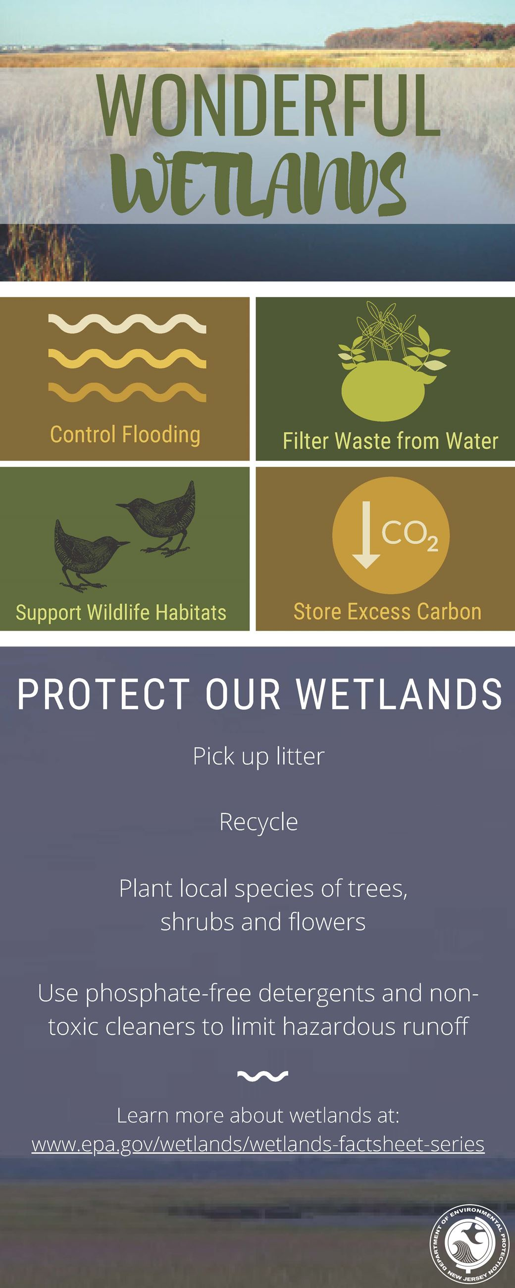Wonderful Wetlands Infographic Opens in new window
